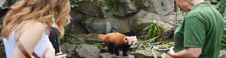 Bristol Zoo in Bristol